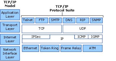 Training DNS (Domain Name System and Its Different Uses OSI Model